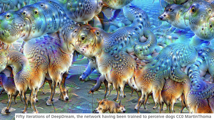 Fifty iterations of DeepDream, the network having been trained to perceive dogs CC0 MartinThoma