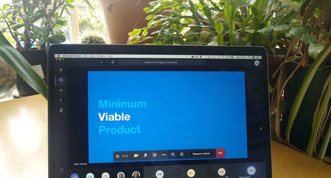 "Laptop screen in front of houseplants. Text on screen says ""Minimum Viable Product"""
