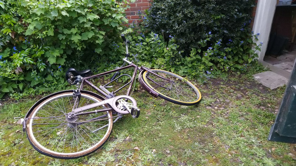 Old bicycle on mossy path by overgrown garden border